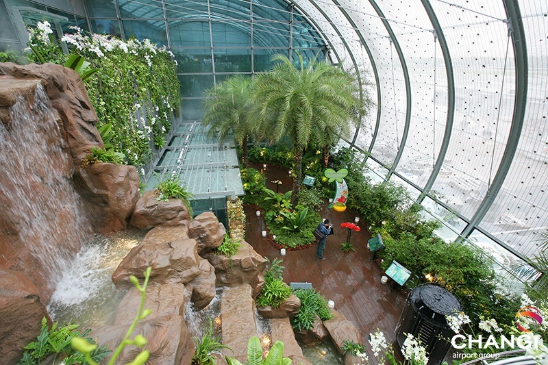 Nature & Gardens Terminal 3 Transit - Worlds first Butterfly Garden in an airport