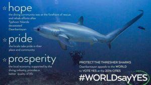 save-thresher-sharks