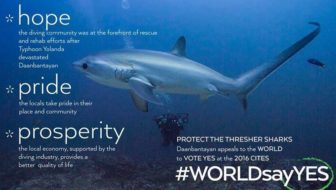 There's shark meat in your food! Help Save Thresher Sharks